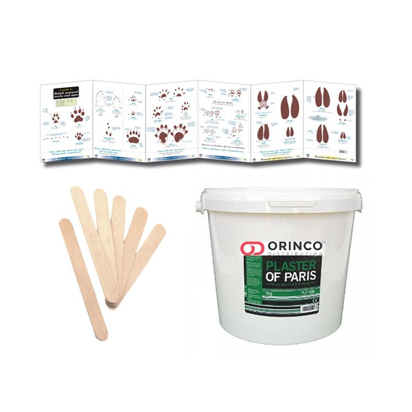 Animal Tracks and Signs Casting Kit
