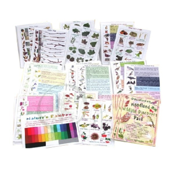 Deciduous Woodland Wildlife School Pack