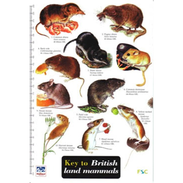 FSC Field Guide to Land Mammals