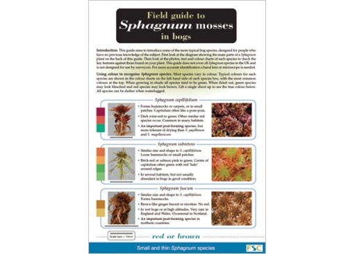 FSC Field Guide to Sphagnum Mosses