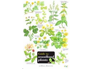 FSC Field Guide to Woodland Plants